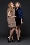 Two beautiful girls in fashion fur coats Stock Photography