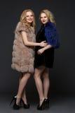 Two beautiful girls in fashion fur coats Stock Photo