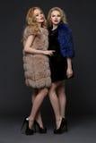 Two beautiful girls in fashion fur coats Stock Photos