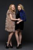 Two beautiful girls in fashion fur coats Stock Images