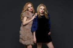 Two beautiful girls in fashion fur coats Stock Image