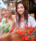 Two beautiful girls outdoors Royalty Free Stock Photography