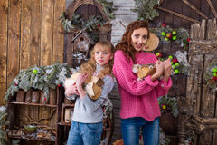 Two beautiful girls posing in Christmas decorations Stock Photo
