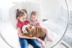 Two beautiful girls sitting in a hanging chair with a bulldog puppy royalty free stock images