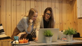 Two beautiful girls smilling and use laptop stock video footage