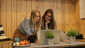 Two beautiful girls smilling and use laptop stock footage