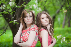 Two beautiful girls in the Spring Park stock images