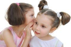 Two beautiful girls telling secret. Isolated on white background royalty free stock photos