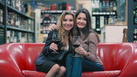 Two beautiful girls with wineglasses in hands are hugging. Beautiful blonde and brunette sitting on the sofa in the shop. They holding a glasses with red wine in stock video footage
