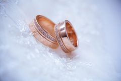 Two beautiful golden rings on the vail Stock Image