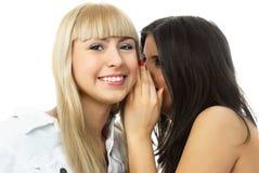 Two beautiful gossiping girls Stock Images