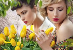 Two beautiful ladies Stock Images