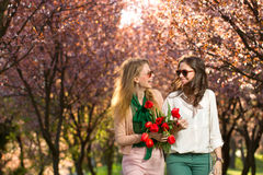 Two beautiful ladies in spring park Stock Photos