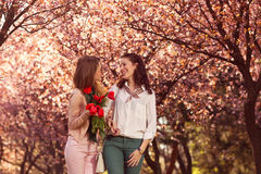 Two beautiful ladies in spring park Stock Images
