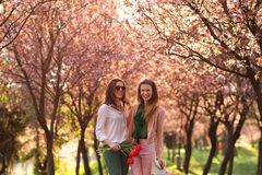 Two beautiful ladies in spring park Royalty Free Stock Photography