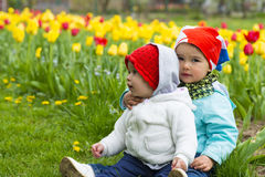 Two beautiful little girl with tulips in background stock photo