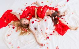 Two beautiful long-haired girls Royalty Free Stock Photo