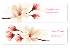Two beautiful magnolia banners. Royalty Free Stock Photos