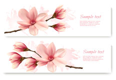 Two beautiful magnolia banners. Stock Image