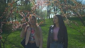 Beautiful women enjoying smell in spring park stock footage