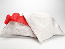 Two beautiful pillows Royalty Free Stock Photography