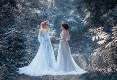 Two beautiful princess. Girls are walking in luxurious dresses with a long train. The background is beautiful nature in cold winter, artistic tones. Fairytale Stock Images