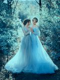 Two beautiful princess. Girls are walking in luxurious dresses with a long train. The background is beautiful nature in cold winter, artistic tones. Fairytale Stock Photo
