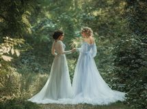 Two beautiful princess. Girls are walking in luxurious dresses with a long train. Background beautiful green  nature. Fairytale Photography Stock Photos