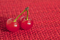 Two beautiful ripe cherries Stock Image