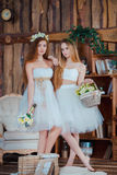 Two beautiful sensual brides standing in vintage Royalty Free Stock Photos