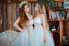 Two beautiful sensual girls sitting in vintage. Interior Stock Images