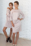 Two beautiful stylish happy girls in beige fashionable dress posing in studio Stock Photography