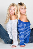 Two beautiful sisters Royalty Free Stock Photos