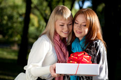 Two beautiful sisters with gift in the park Royalty Free Stock Photos