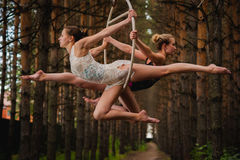 Two beautiful and slim gymnasts doing difficult exercises on aerial ring Royalty Free Stock Images