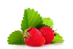 Two beautiful strawberries isolated Stock Photos