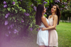 Two beautiful twins young women in summer dresses near blooming lilac Stock Photography