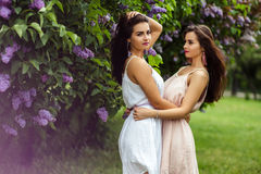 Two beautiful twins young women in summer dresses near blooming lilac Royalty Free Stock Photos
