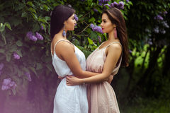 Two beautiful twins young women in summer dresses near blooming lilac Stock Photos