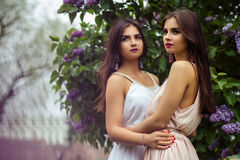 Two beautiful twins young women in summer dresses near blooming lilac Royalty Free Stock Photo
