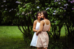 Two beautiful twins young women in summer dresses near blooming lilac Stock Image