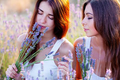 Two beautiful woman on lavender field Stock Photography