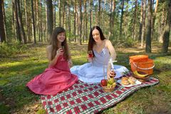 Two beautiful woman at picnic in forest Stock Photos