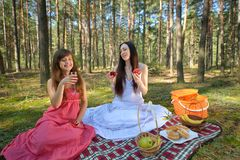 Two beautiful woman at picnic in forest Royalty Free Stock Image