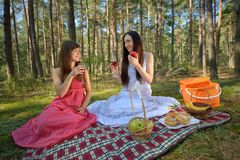 Two beautiful woman at picnic in forest Royalty Free Stock Photography