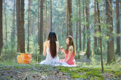 Two beautiful woman at picnic in forest Royalty Free Stock Photos