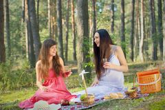 Two beautiful woman at picnic in forest Stock Image