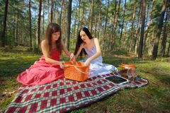 Two beautiful woman at picnic Royalty Free Stock Photography