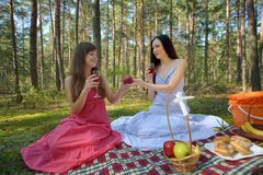 Two beautiful woman at picnic Stock Photography