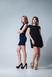 Two beautiful woman posing in dresses Royalty Free Stock Photography
